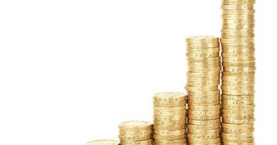 Cykl edukacyjny – Rodzaje zysków